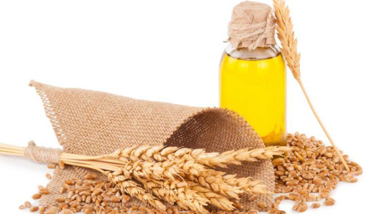 Beneficiile nestiute ale uleiului din germeni de grau!